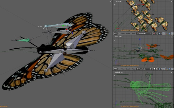 Butterfly and rigging in Blender 2.59
